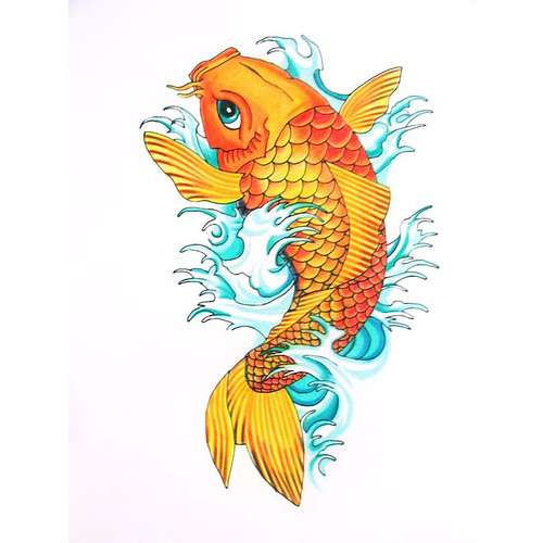 Tatuaggio carpa koi for Koi carp pool design