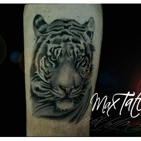 max tattoo studio