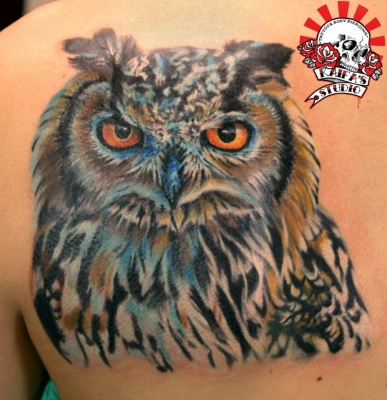 kaifa tattoo    ,,,, gufo