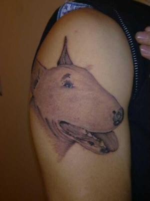 street jungle tattoo   ---ritratto bull terrier
