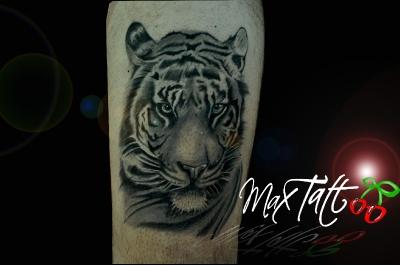 max tattoo studio